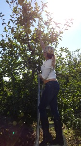 A girl reaching for the top of a tree